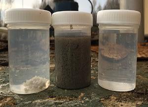 Échantillons de l'eau d'entrée, de la concentration des flocs, et de l'eau de sortie