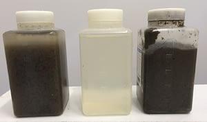 Échantillons eau d'entrée, eau de sortie, et concentration des flocs